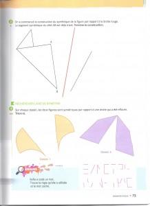Symétrie CM1 p73 001